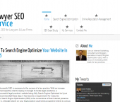 LawyerSEOservices.com, Niche SEO business?